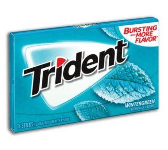 Trident, Wintergreen Sugar Free Gum 14sticks