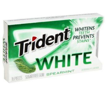 Trident White 16 pc Singles Spearmint