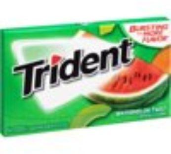Trident Single 14pc Watermelon Twist